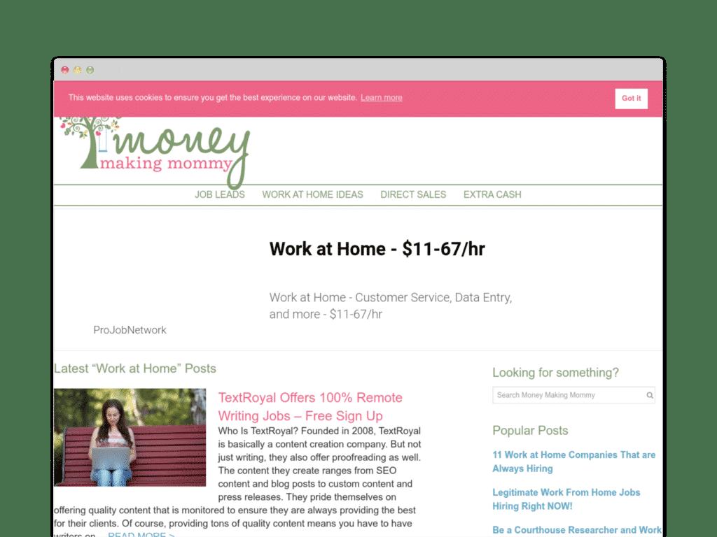 MOney Making Mommy Website Screen Shot.