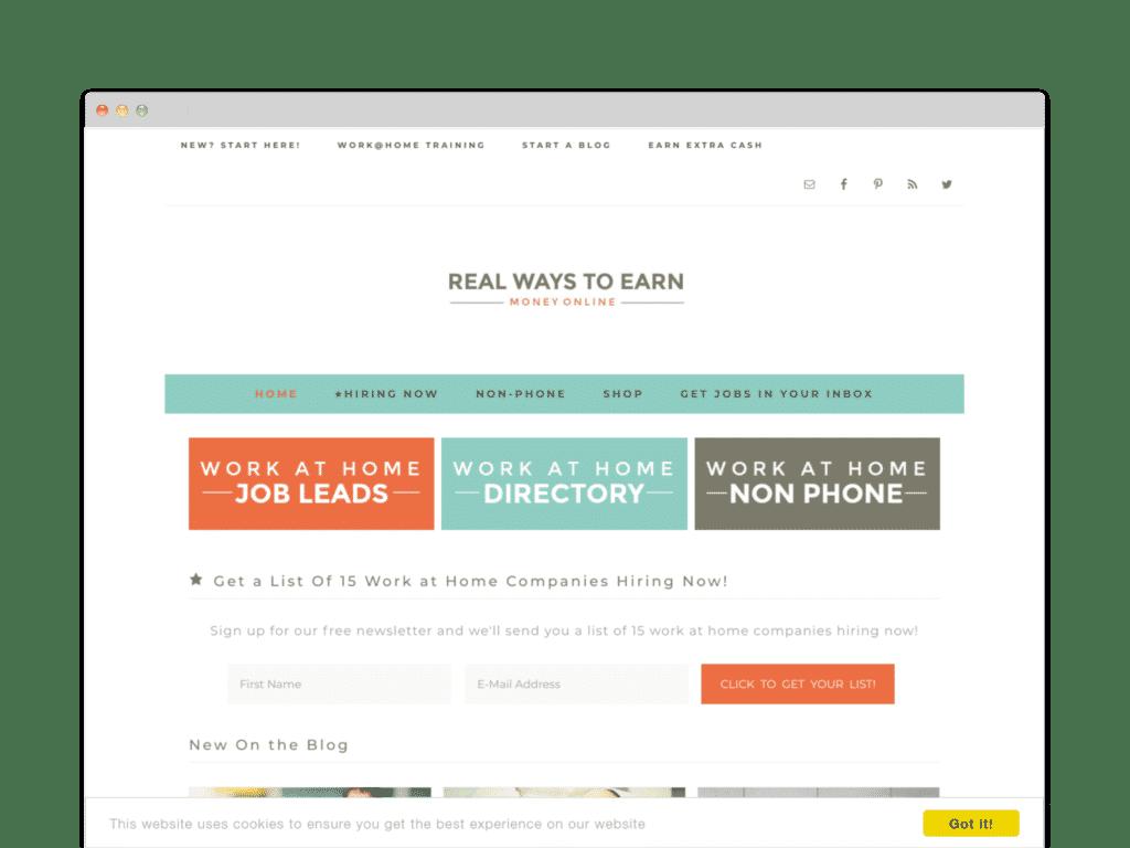Real Ways to Earn Money Online Website Screen Shot.